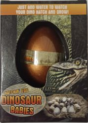 Dinozaur Jajo do Wyklucia Wzrostu MAGIC DINOSAUR EGG